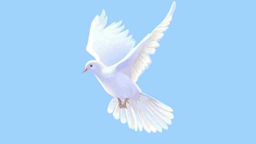 Símbolo do Espírito Santo -pomba