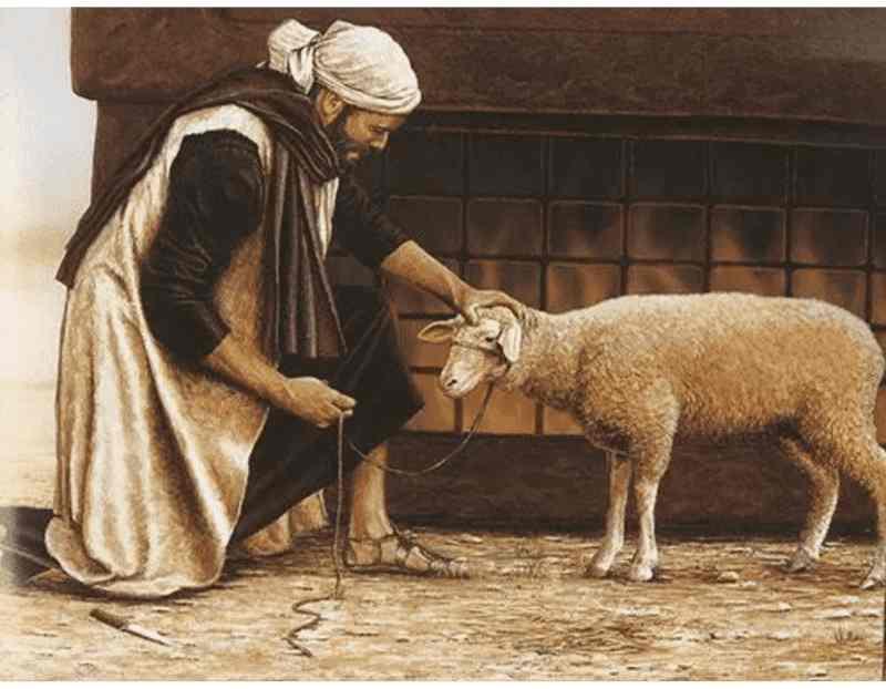 cordeiro (ovelha) como alimento nos tempos bíblicos