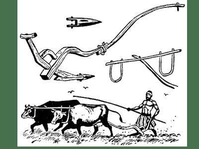 arado nos tempos da bíblia - agricultura na palestina