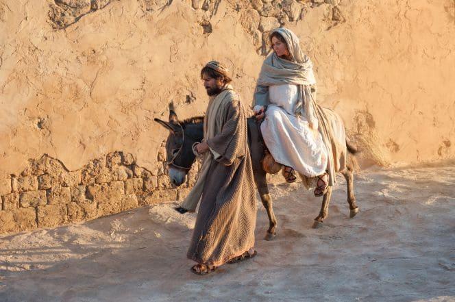 jumento nas viagens dos tempos bíblicos