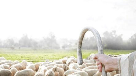 o senhor e meu pastor nada me faltara salmo 23