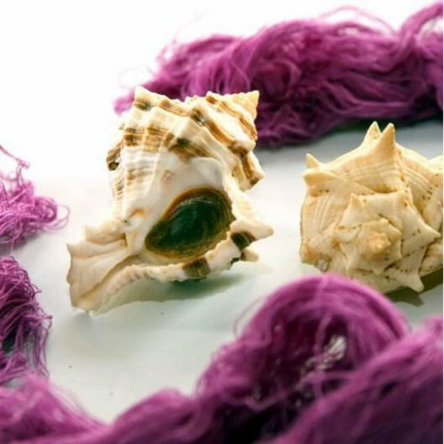 purpura cor usada no tabernaculo