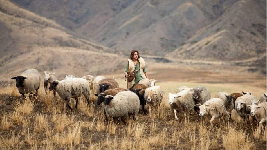 como era o trabalho do pastor de ovelhas nos tempos bíblicos