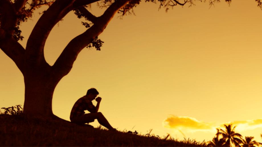 palavra da sabedoria-dom espiritual