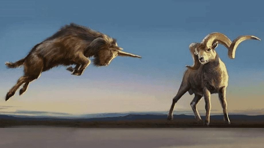 significado-Daniel 8 Visão de um carneiro e de um bode - interpretação