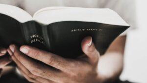 Ilustração bíblica Examinai as Escrituras